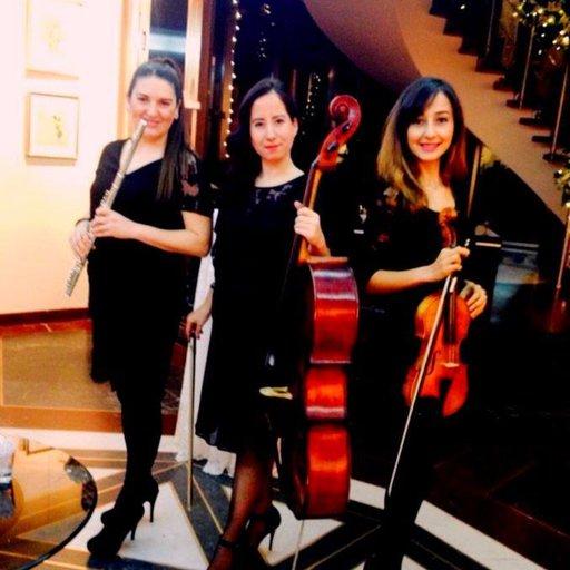 Grup Tria /Enstrümantal Trio Orkestra - Trio Grubu