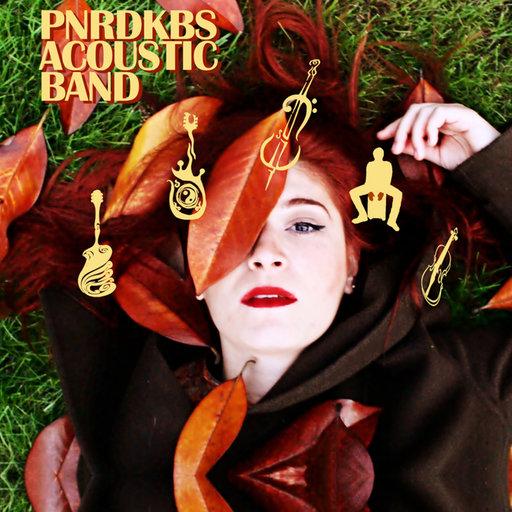 PNRDKBS Band